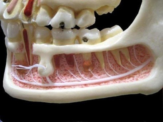 Обезболивание в стоматологической практике